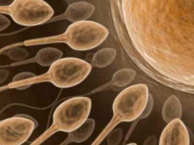 Причины и методы лечения азооспермия