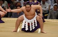 Сколько весит борец сумо