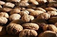 Калории в грецком орехе