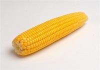 Сколько калорий в початке кукурузы